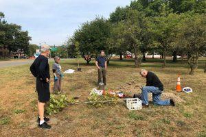 vfp-tree-planting-2020-1