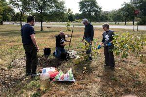 vfp-tree-planting-2020-2