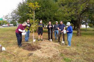 vfp-tree-planting-2020-5